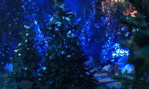 The_Wizard_of_Oz_Christmas_Walk2